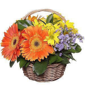 Colourful Basket