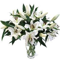 Casablanca Lily Bouquet