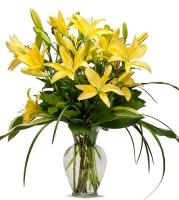 Sunny Lilies