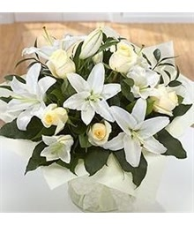 White Rose Lily
