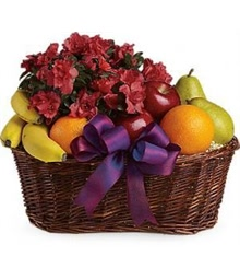 Plants and Fruit Basket