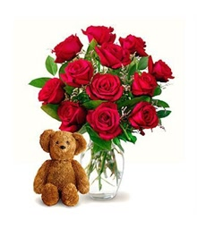 12 Roses and Teddy